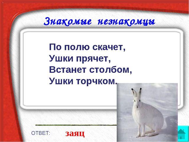 Знакомые незнакомцы ОТВЕТ: заяц По полю скачет, Ушки прячет, Встанет столбом,...