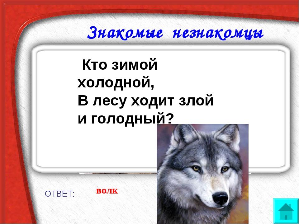Знакомые незнакомцы ОТВЕТ: волк Кто зимой холодной, В лесу ходит злой и голо...