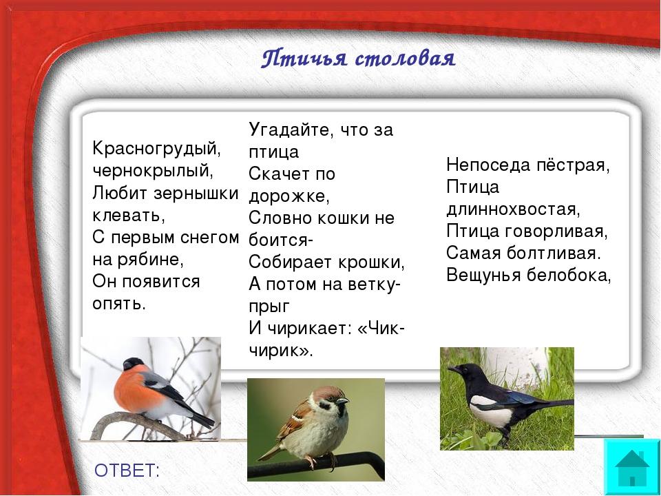 Птичья столовая ОТВЕТ: Красногрудый, чернокрылый, Любит зернышки клевать, С...