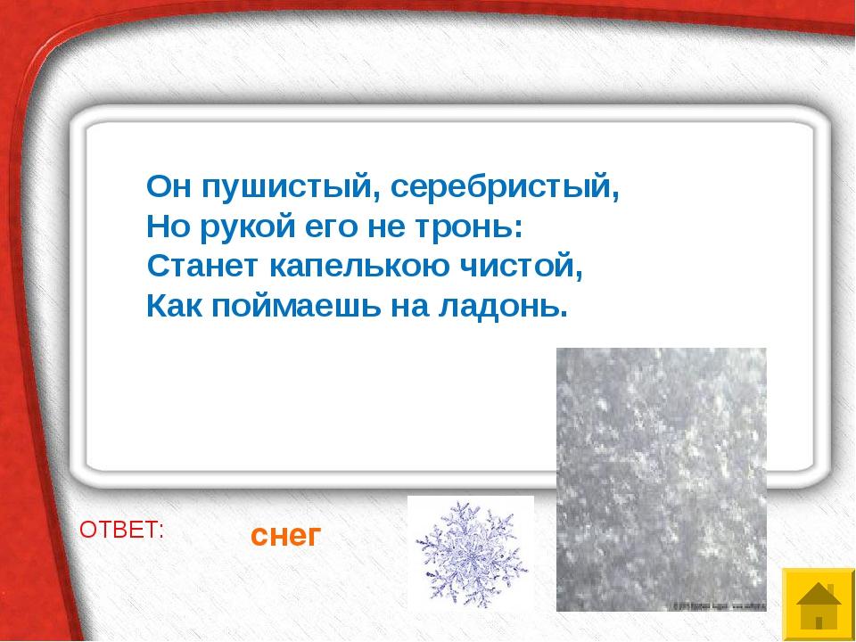 ОТВЕТ: снег Он пушистый, серебристый, Но рукой его не тронь: Станет капель...