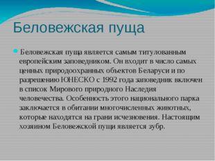 Беловежская пуща Беловежская пуща является самым титулованным европейским зап