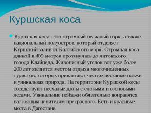 Куршская коса Куршская коса - это огромный песчаный парк, а также национальны