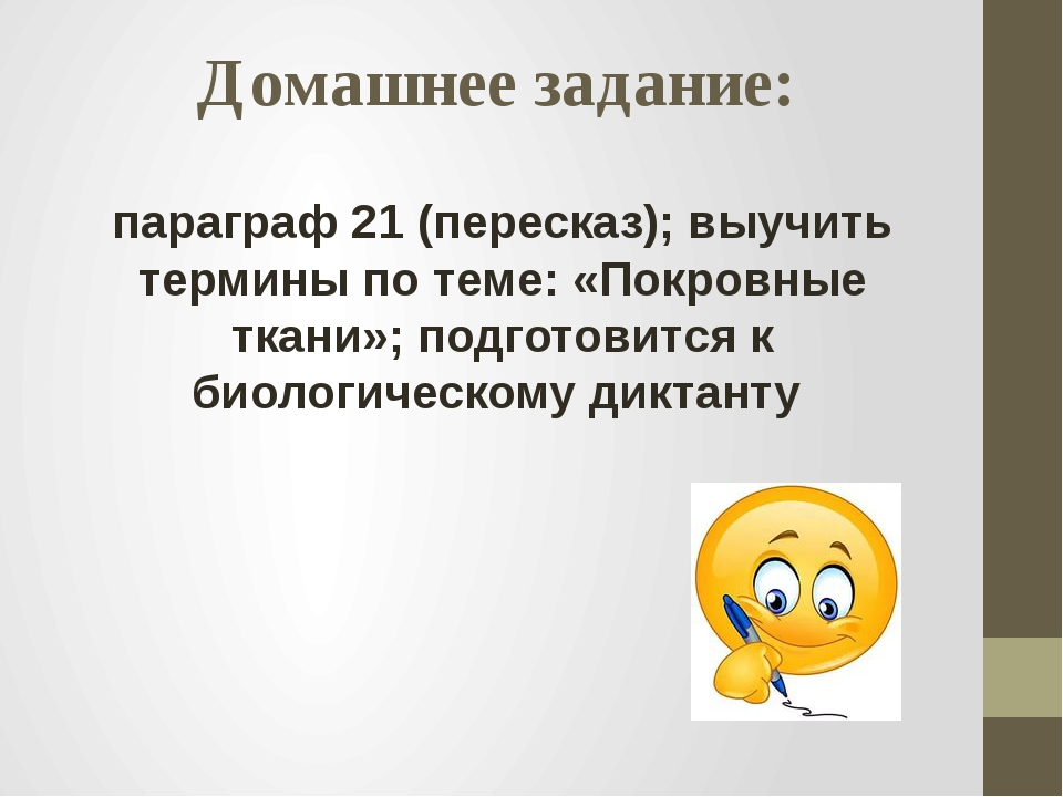 Домашнее задание: параграф 21 (пересказ); выучить термины по теме: «Покровные...