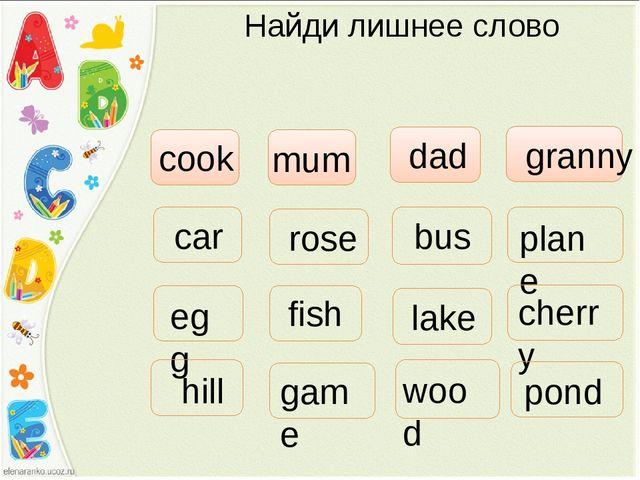 Найди лишнее слово cook mum dad granny car plane bus egg fish cherry rose hil...