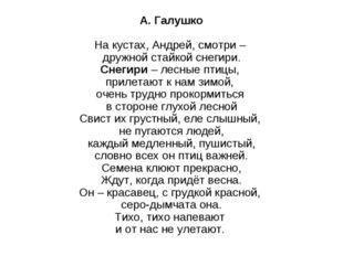 А. Галушко На кустах, Андрей, смотри – дружной стайкой снегири. Снегири– ле