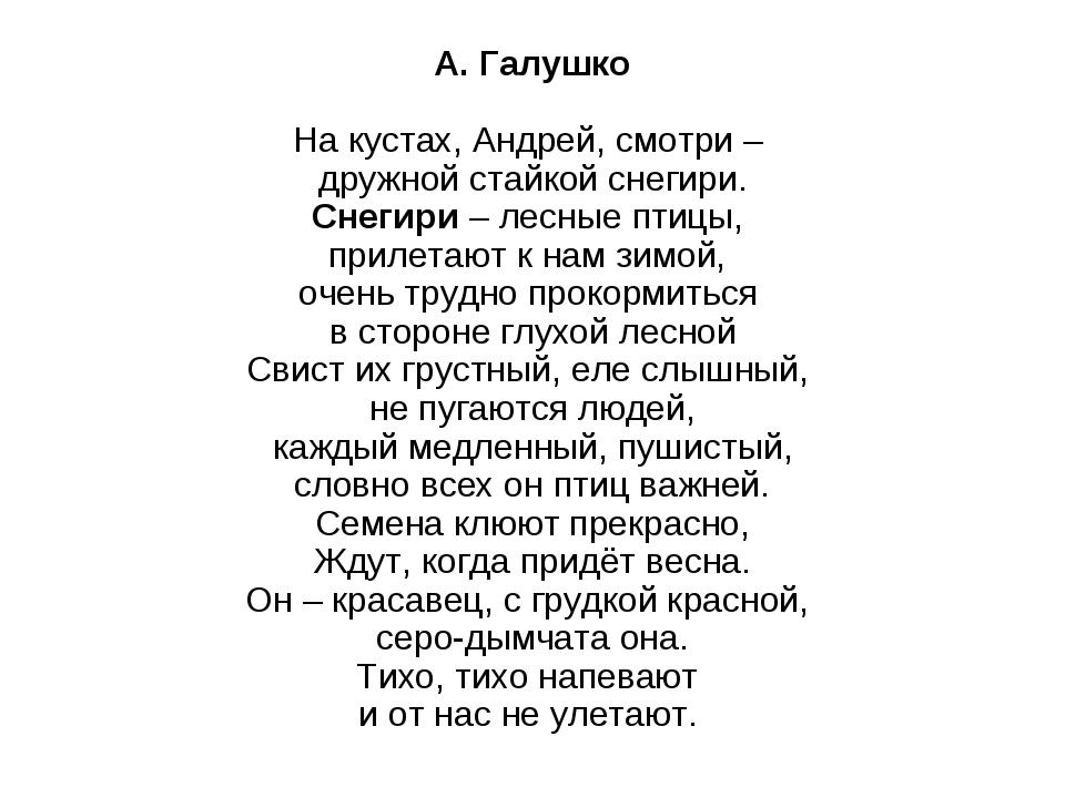А. Галушко На кустах, Андрей, смотри – дружной стайкой снегири. Снегири– ле...