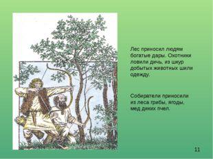 Лес приносил людям богатые дары. Охотники ловили дичь, из шкур добытых животн