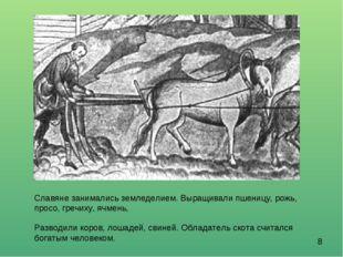 Славяне занимались земледелием. Выращивали пшеницу, рожь, просо, гречиху, ячм
