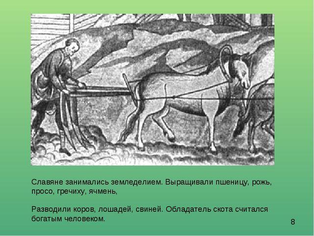 Славяне занимались земледелием. Выращивали пшеницу, рожь, просо, гречиху, ячм...