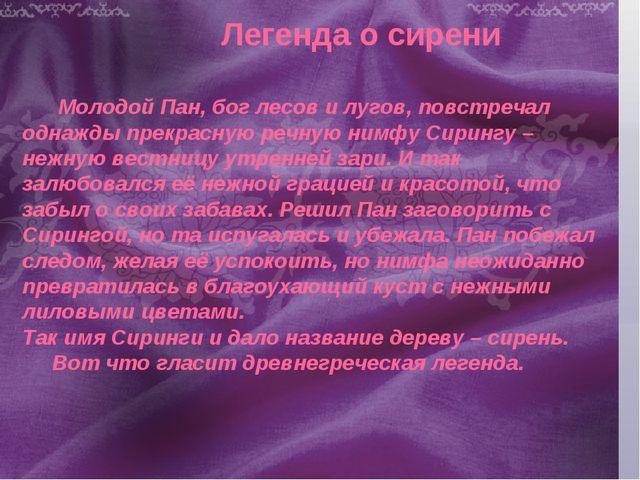 Легенда о сирени Молодой Пан, бог лесов и лугов, повстречал однажды прекрасну...