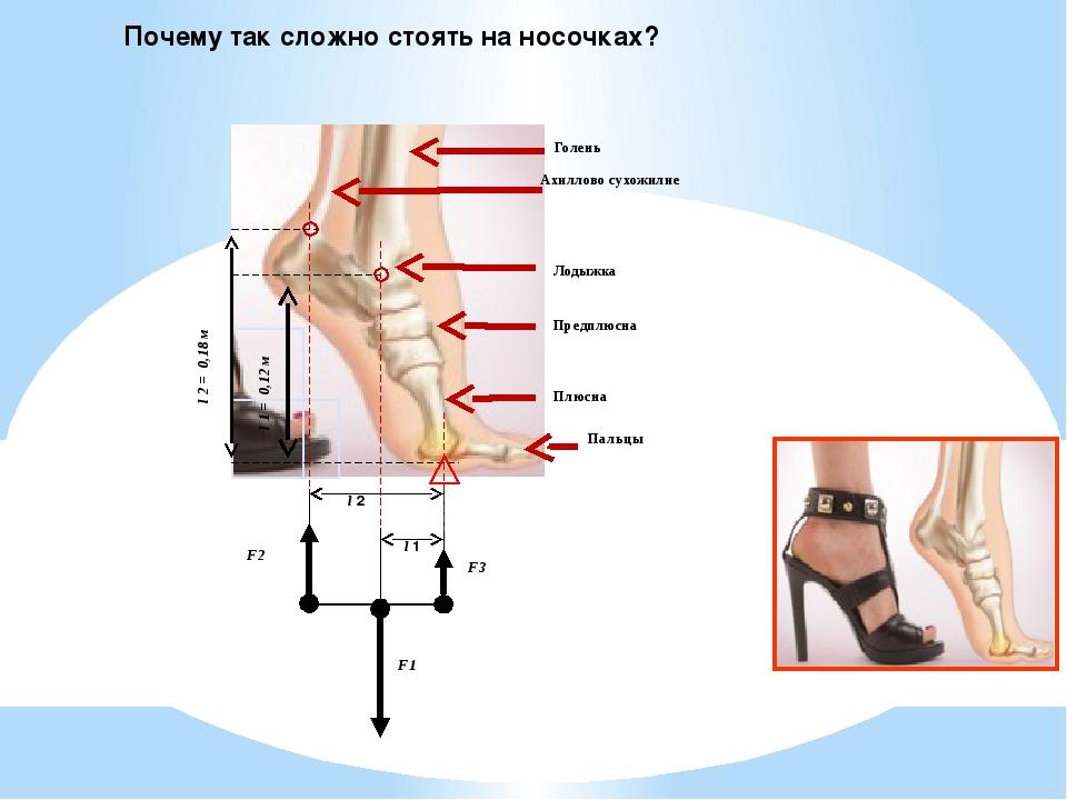 Почему так сложно стоять на носочках? Ахиллово сухожилие Голень Плюсна Пальцы...