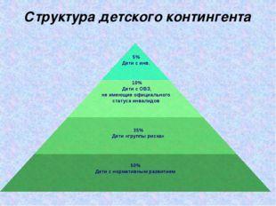 Структура детского контингента 10% Дети с ОВЗ, не имеющие официального статус