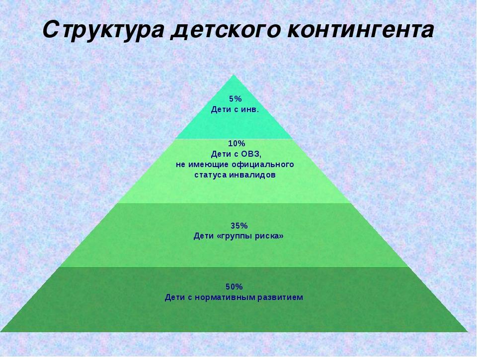 Структура детского контингента 10% Дети с ОВЗ, не имеющие официального статус...