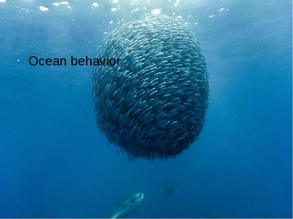 Ocean behavior