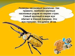 Размеры насекомых различны. Как правило, наиболее крупные насекомые родом из