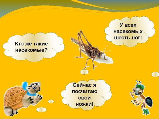Кто же такие насекомые? Сейчас я посчитаю свои ножки! У всех насекомых шесть...