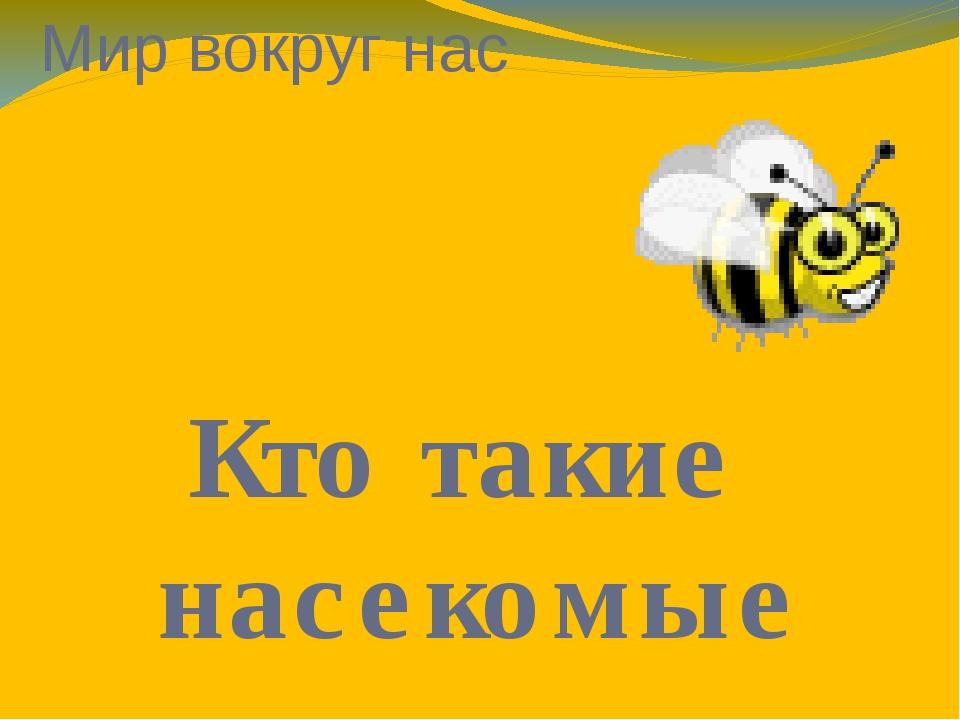 Мир вокруг нас Кто такие насекомые