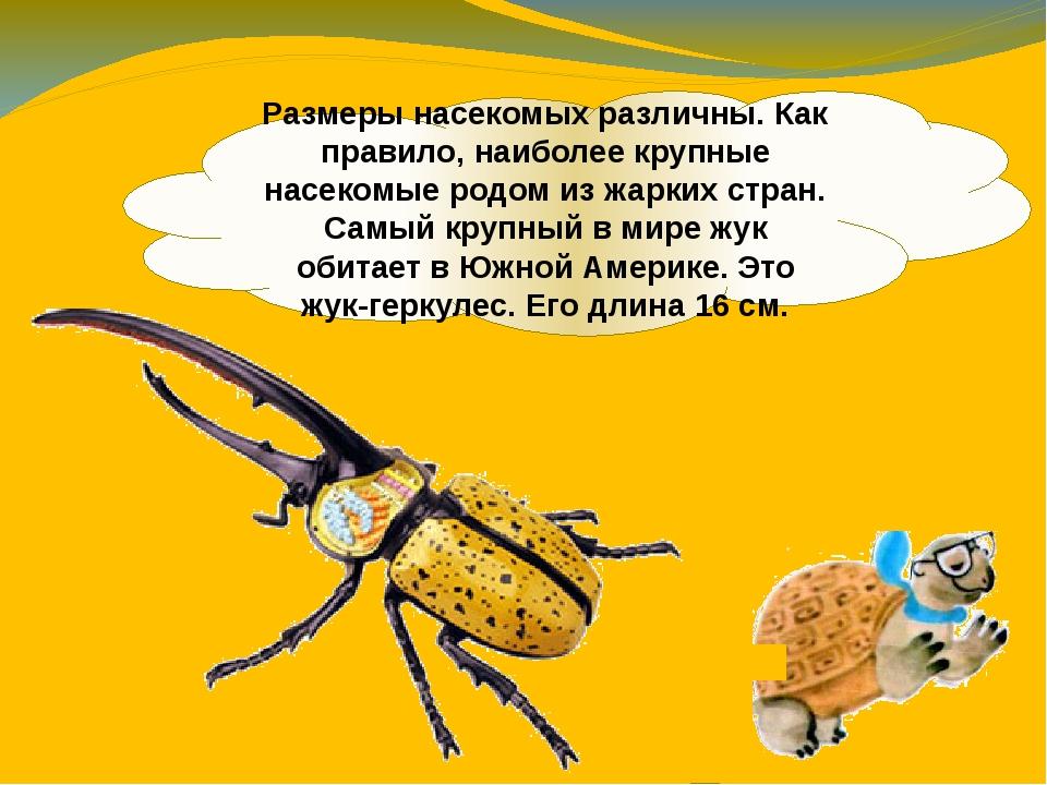 Размеры насекомых различны. Как правило, наиболее крупные насекомые родом из...