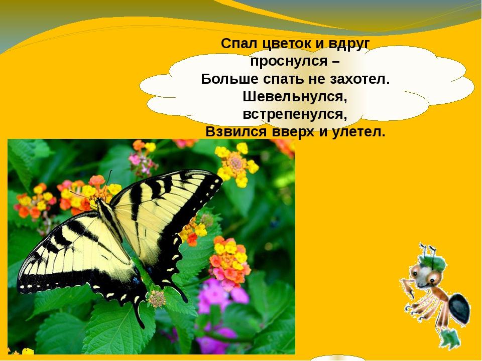 Спал цветок и вдруг проснулся – Больше спать не захотел. Шевельнулся, встрепе...