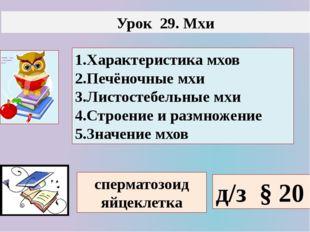 Урок 29. Мхи 1.Характеристика мхов 2.Печёночные мхи 3.Листостебельные мхи 4.