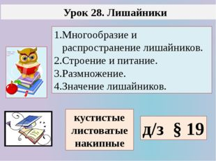 Урок 28. Лишайники 1.Многообразие и распространение лишайников. 2.Строение и