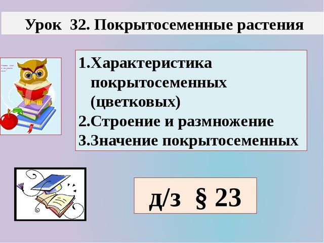 Урок 32. Покрытосеменные растения д/з § 23 1.Характеристика покрытосеменных...