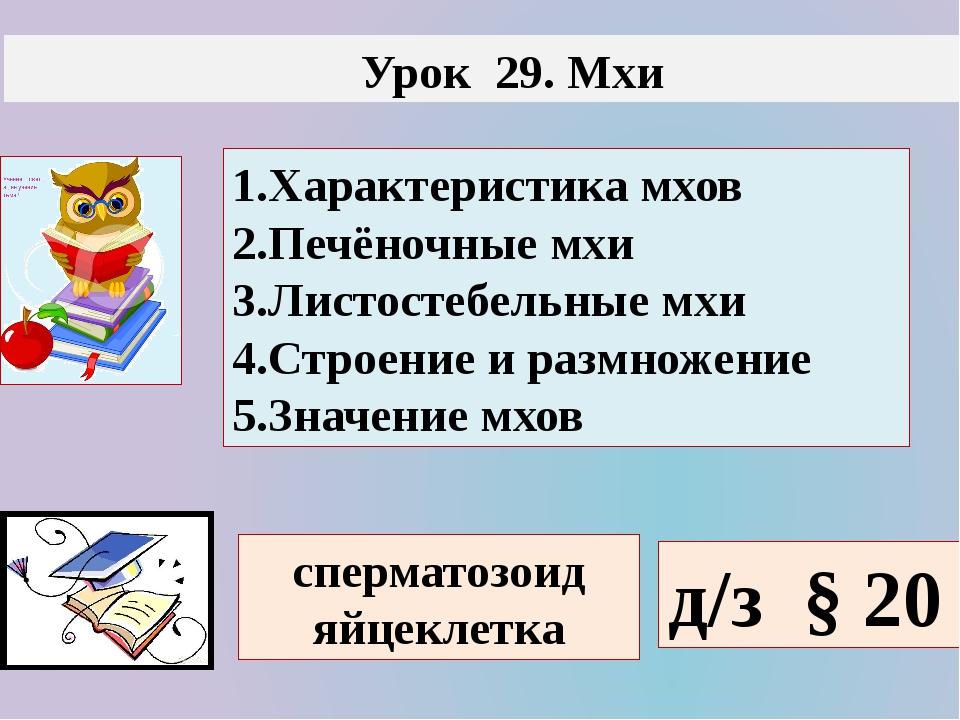 Урок 29. Мхи 1.Характеристика мхов 2.Печёночные мхи 3.Листостебельные мхи 4....