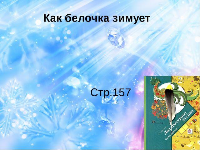 Как белочка зимует Стр.157
