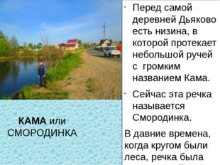 КАМА или СМОРОДИНКА Перед самой деревней Дьяково есть низина, в которой проте