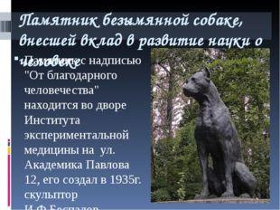 Памятник безымянной собаке, внесшей вклад в развитие науки о человеке Памятни