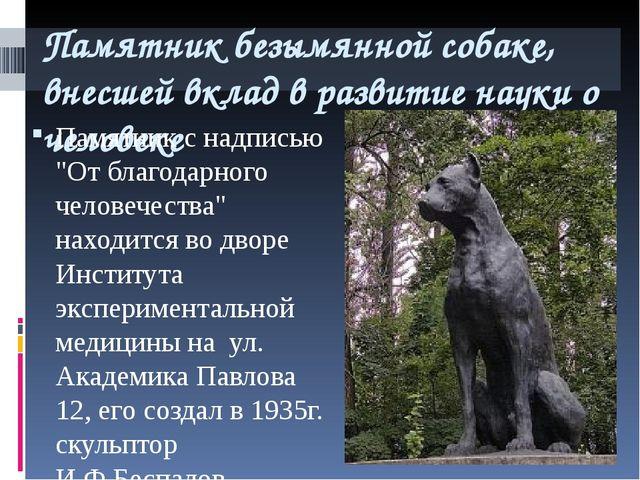 Памятник безымянной собаке, внесшей вклад в развитие науки о человеке Памятни...