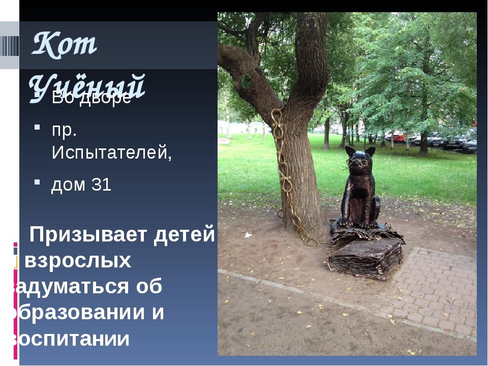 Кот Учёный Во дворе пр. Испытателей, дом 31 Призывает детей и взрослых задума...