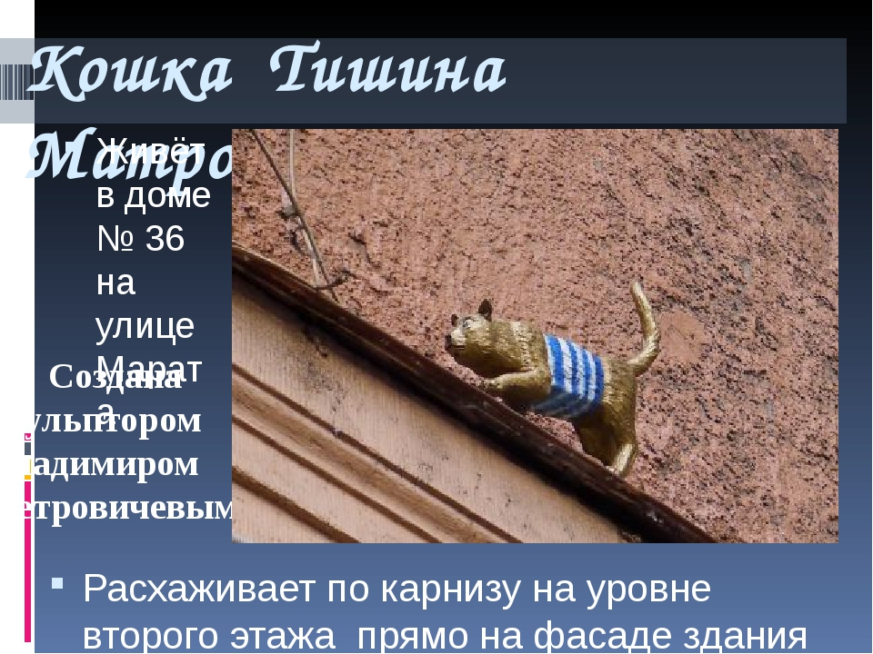 Кошка Тишина Матроскина Живёт в доме № 36 на улице Марата Расхаживает по карн...