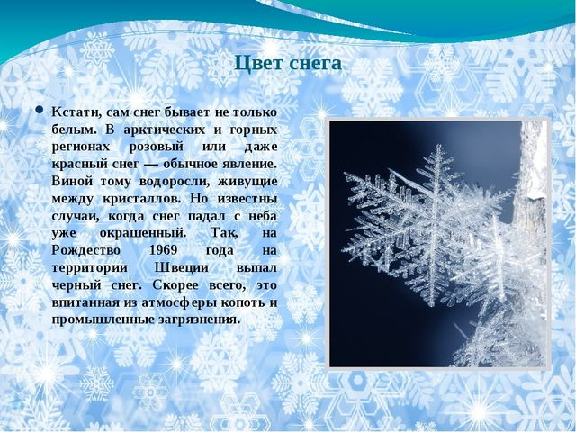 Цвет снега Кстати, сам снег бывает не только белым. В арктических и горных ре...