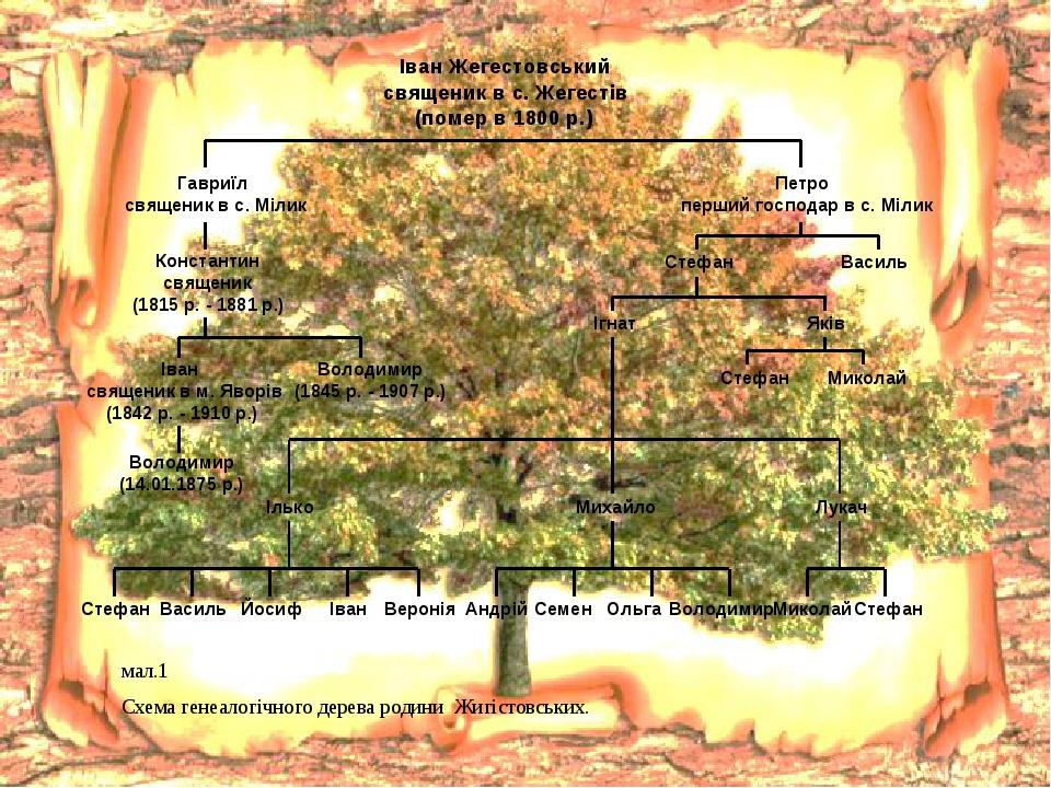 мал.1 Схема генеалогічного дерева родини Жигістовських.