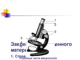 Закрепление изученного материала. 1. Строение микроскопа. 1 2 3 4 5 6 7 Подп