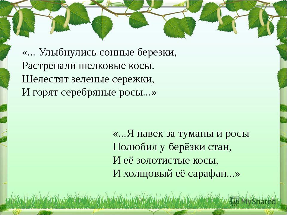 «... Улыбнулись сонные березки, Растрепали шелковые косы. Шелестят зеленые се...