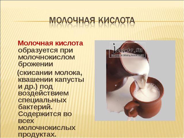 Молочная кислота образуется при молочнокислом брожении (скисании молока, ква...