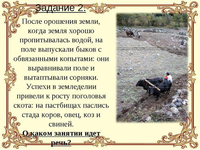 Задание 2. После орошения земли, когда земля хорошо пропитывалась водой, на п...