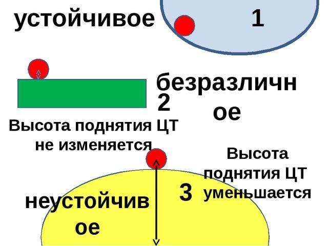 1 2 3 Высота поднятия ЦТ не изменяется Высота поднятия ЦТ уменьшается устойч...
