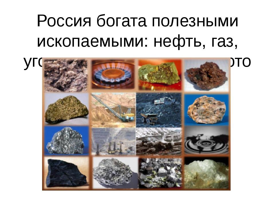 Россия богата полезными ископаемыми: нефть, газ, уголь, железная руда, золото