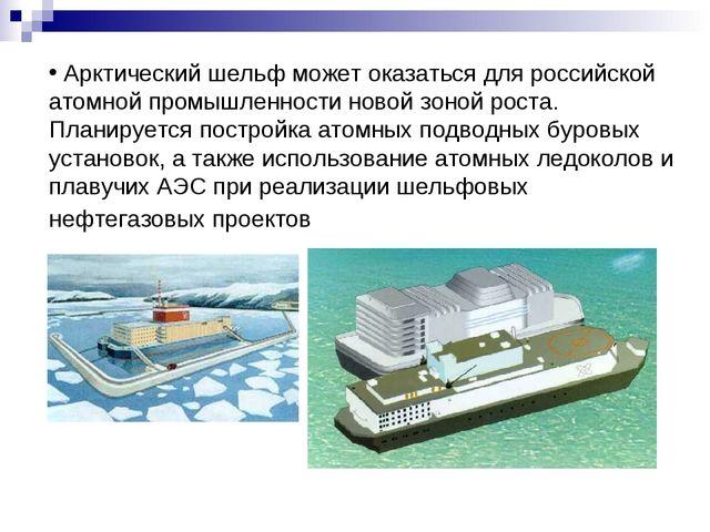 Арктический шельф может оказаться для российской атомной промышленности ново...