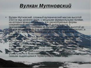 Вулкан Мутновский Вулкан Мутновский, сложный вулканический массив высотой 232