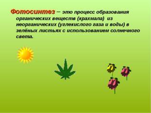 Фотосинтез – это процесс образования органических веществ (крахмала) из неорг