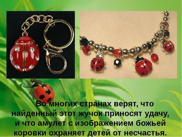 Во многих странах верят, что найденный этот жучок приносят удачу, и что амул...