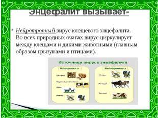 Нейротропный вирус клещевого энцефалита. Во всех природных очагах вирус цирку