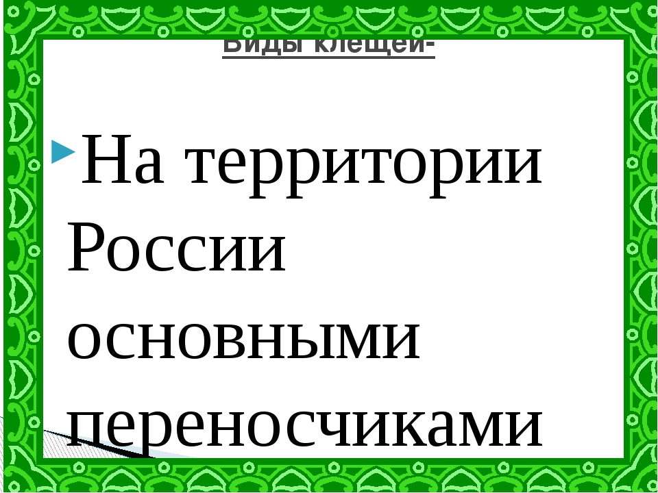 На территории России основными переносчиками клещевого энцефалита являются дв...