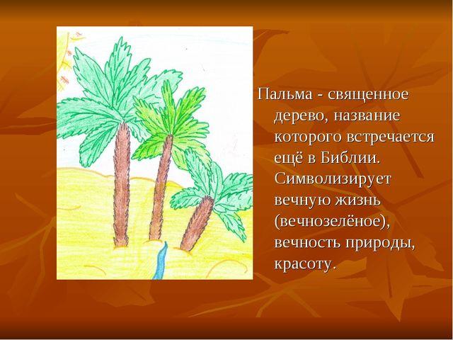 Пальма - священное дерево, название которого встречается ещё в Библии. Символ...