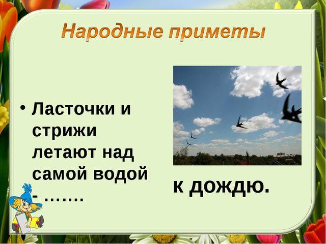 Ласточки и стрижи летают над самой водой - ……. к дождю.