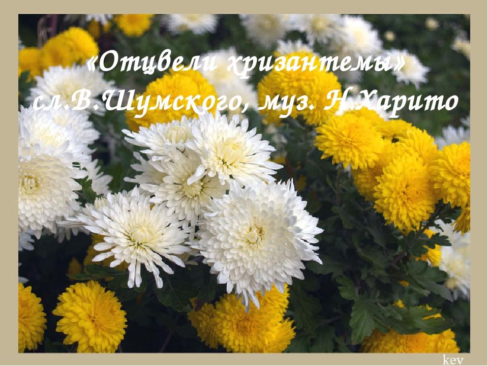 «Отцвели хризантемы» сл.В.Шумского, муз. Н.Харито